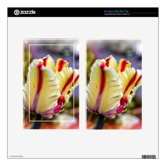 Tulip Kindle Fire Decal