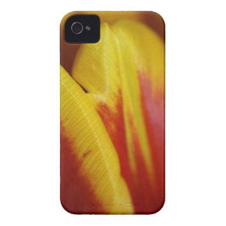 Tulip Skin iPhone 4 Covers