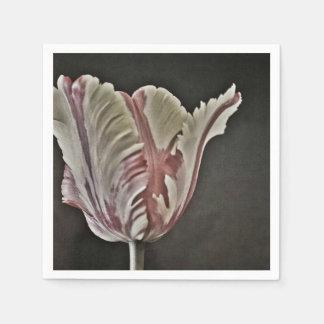 tulip paper napkins