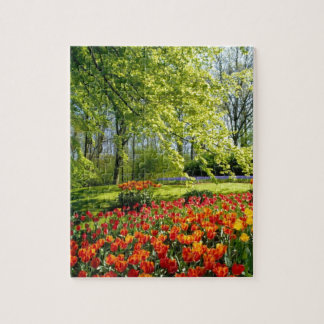 Tulip time, gardens at Keukenhof Jigsaw Puzzle