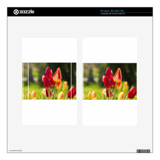 Tulip Tiptoe Time Decal For Kindle Fire