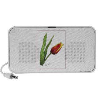 Tulip Travel Speakers