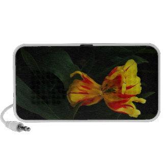 Tulip Travelling Speaker