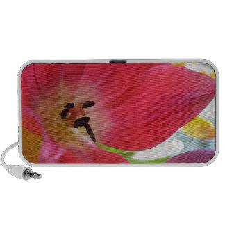Tulip Travelling Speakers