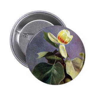 Tulip Tree Flower Pinback Buttons
