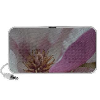Tulip Tree Flower Laptop Speakers