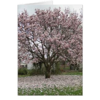 Tulip Tree/ Friendship Card