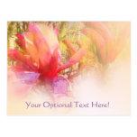 Tulip Tree Magnolia Post Cards