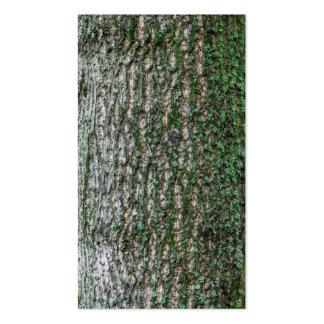 Tulip tree trunk business card