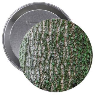 Tulip tree trunk pinback buttons