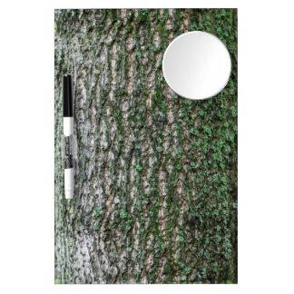 Tulip tree trunk Dry-Erase whiteboard