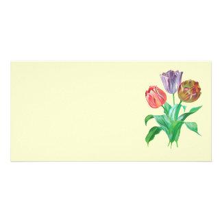 Tulip Trio Card