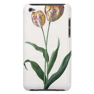 Tulip Tulip Barely There iPod Cover