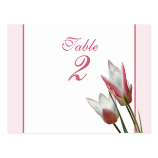 Tulip Wedding table number card Postcard