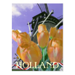 Tulip Windmill Art Holland Postcard