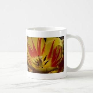 tulip,yellow and red coffee mug