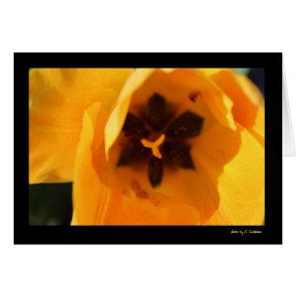 Tulipán amarillo tarjeta de felicitación