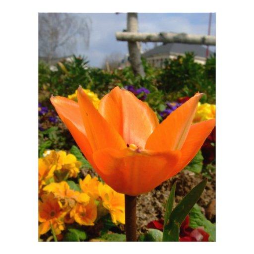 ¡Tulipán anaranjado con las nubes grises! Plantilla De Membrete