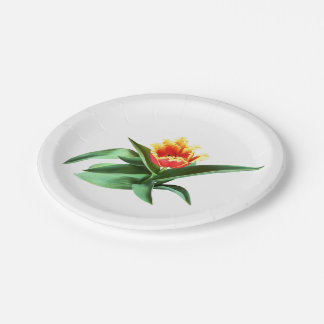 Tulipán anaranjado con volantes platos de papel