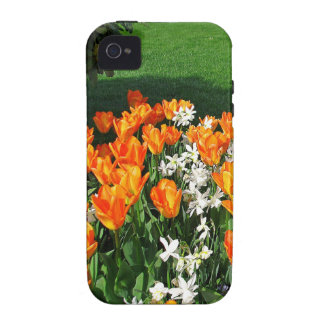 Tulipán anaranjado en productos múltiples vibe iPhone 4 fundas
