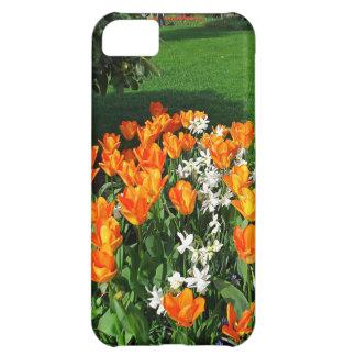 Tulipán anaranjado en productos múltiples