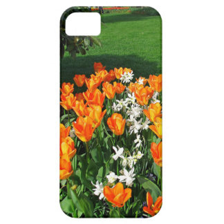 Tulipán anaranjado en productos múltiples iPhone 5 coberturas