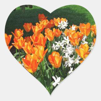 Tulipán anaranjado en productos múltiples pegatina en forma de corazón