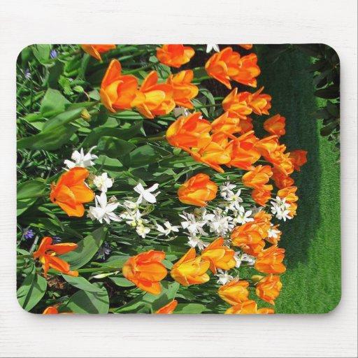 Tulipán anaranjado en productos múltiples tapetes de raton