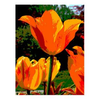 Tulipán anaranjado tarjeta postal