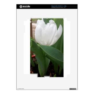 Tulipán blanco calcomanía para iPad 2