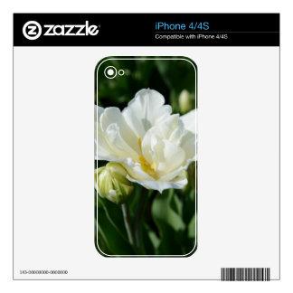 Tulipán blanco calcomanías para el iPhone 4