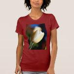Tulipán blanco - camiseta