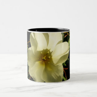 Tulipán blanco taza de dos tonos