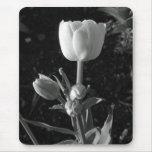 Tulipán blanco y negro tapetes de ratones