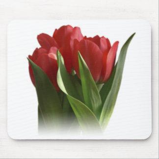Tulipán de 3 rojos alfombrillas de ratones