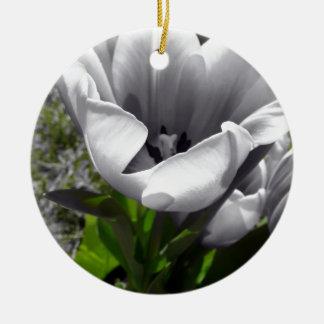 Tulipán de B W Adorno Para Reyes