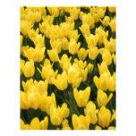 Tulipán de Holanda Plantillas De Membrete