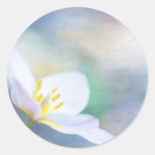 Tulipán de la lavanda pegatina redonda