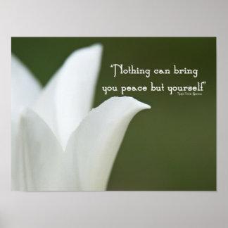 Tulipán de la paz posters