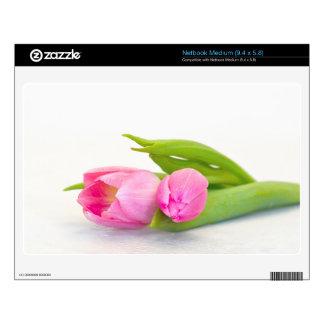 Tulipán de la primavera skins para netbook mediano
