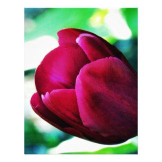 Tulipán del terciopelo plantilla de membrete