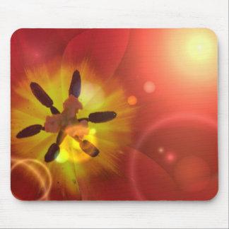 Tulipán en cojín de ratón de la luz del sol tapete de raton