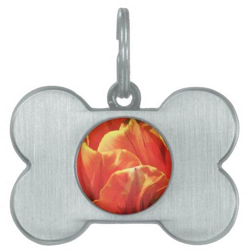 Tulipán en el fuego placa de nombre de mascota