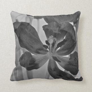 Tulipán en la almohada blanco y negro de Mojo del