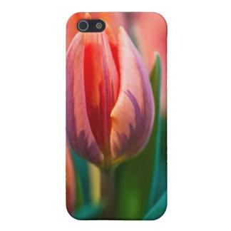 tulipán iPhone 5 funda