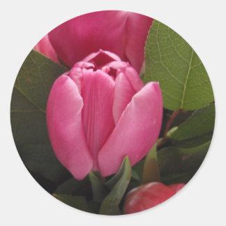 Tulipán hermoso pegatina redonda