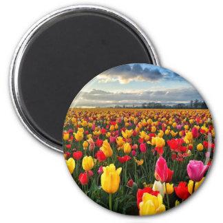 Tulipán Imán Redondo 5 Cm
