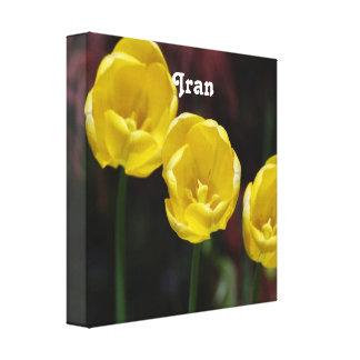 Tulipán iraní impresión de lienzo