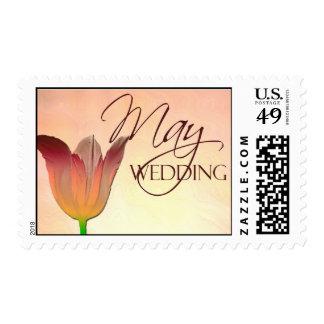 Tulipán para el boda de mayo sello