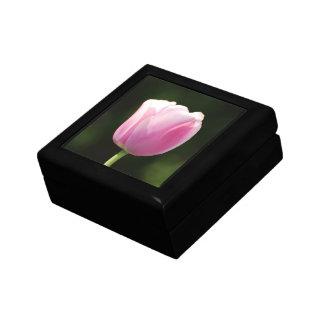Tulipán perfectamente rosado cajas de joyas